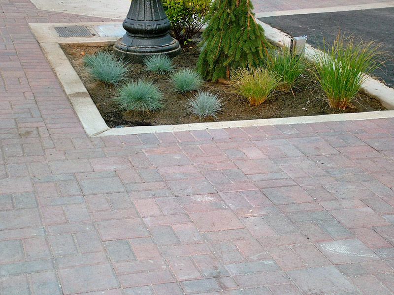 Commercial Hardscape